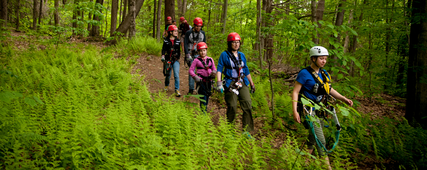 Group of zip liners walking through the woods