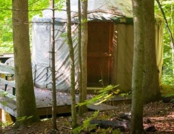Yurt in the woods