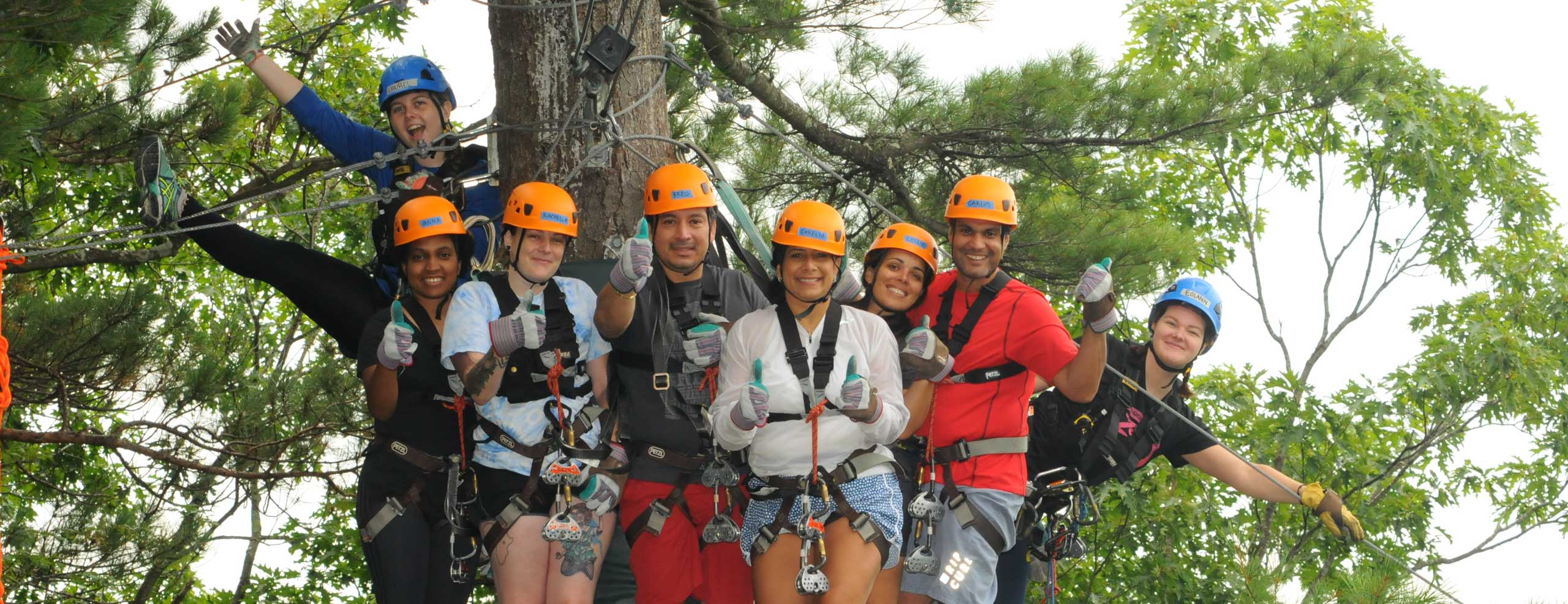 Group of people in zip line gear all standing on a zip line platform high in the trees
