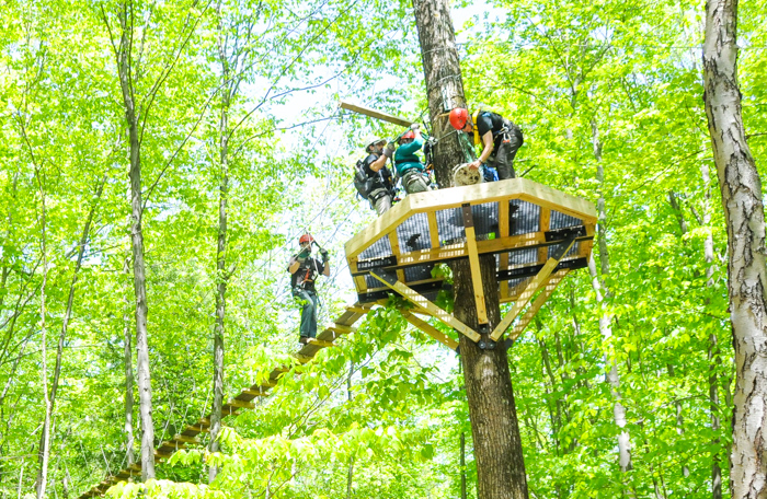 Group of people on a zip line platform high in a tree
